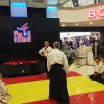 aikido sakura dojo shemall avm aikido gösterisi (1)